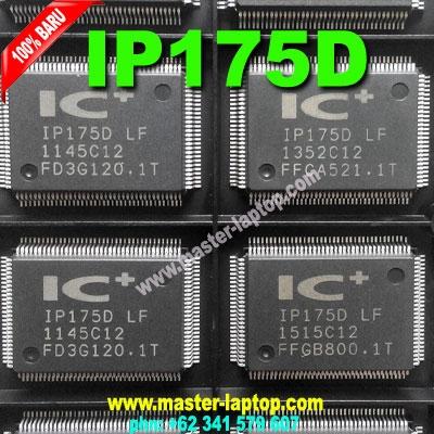 IP175D  large2