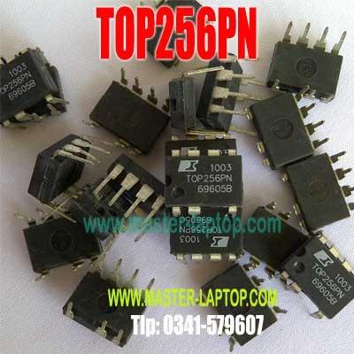 TOP256PN  large2